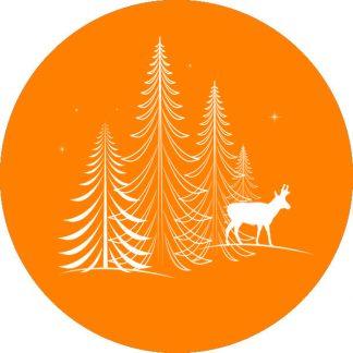 gobo 1 un uno colore alberi di natale pini stelle renna gobo natalizio arancione