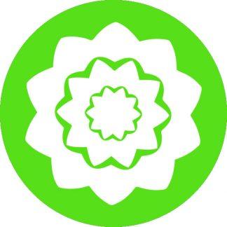 gobo 1 uno un colore motivi geometrici verde