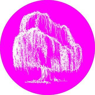 gobo 1 uno un colore albero salice piangente natura magenta rosa
