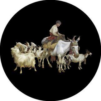 gobo quattro colori scena tema natalizio natale pastore pecore