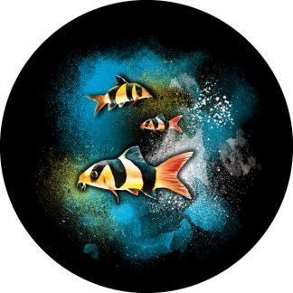 gobo quattro colori pesci pesciolini mare tema marino estate estivo