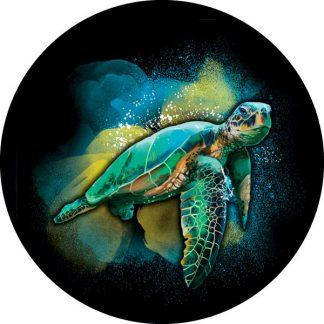 gobo quattro colori tartaruga marina testuggine mare tema marino estate estivo