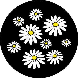 gobo due colori margherite bianco e nero giallo fiori motivo floreale